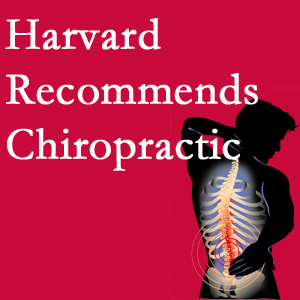 New Roads Chiropractic Center offers chiropractic care like Harvard recommends.
