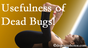 New Roads Chiropractic Center finds dead bugs quite useful in the healing process of New Roads back pain for many chiropractic patients.